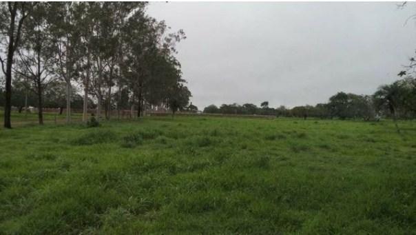 Fazenda à venda, 12620000 m² por R$ 22.000.000,00 - Aeroporto - Feira de Santana/BA - Foto 14