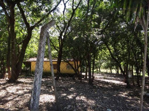 Chácara à venda com 3 dormitórios em Jardim potiguar, Varzea grande cod:15475 - Foto 16
