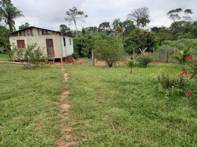 Chacara km 11  - Foto 3