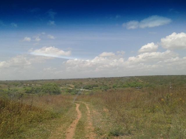 Fazenda com 62 há na br 304, com rio potengi, casa, deposito - Foto 11