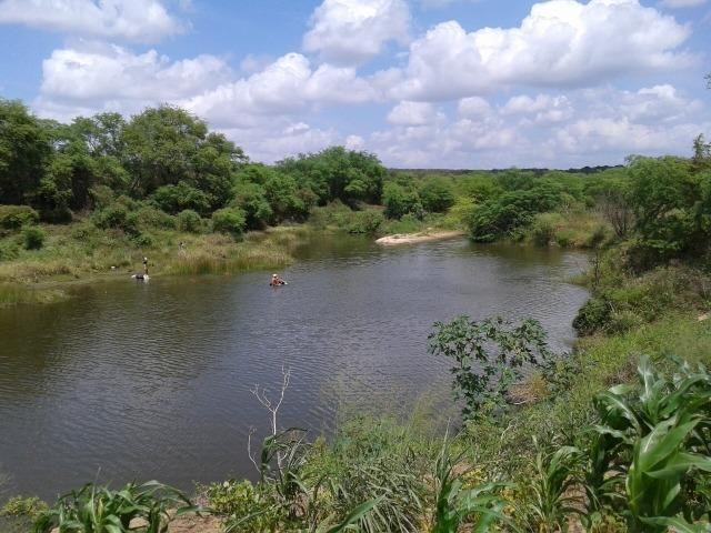 Fazenda com 62 há na br 304, com rio potengi, casa, deposito - Foto 15