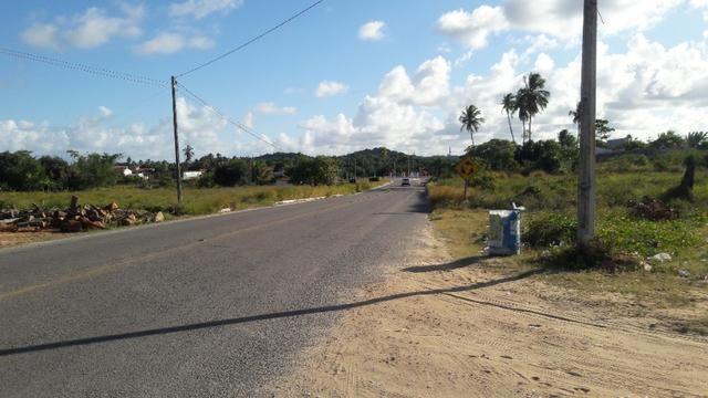 Terreno na entrada de Tamandaré PE - Foto 6