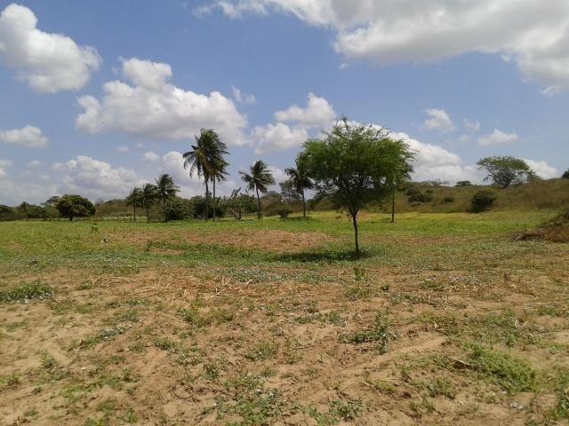 Fazenda com 62 há na br 304, com rio potengi, casa, deposito - Foto 6