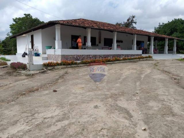 Fazenda com 4 dormitórios à venda, 800000 m² - zona rural - gravatá/pe - Foto 2