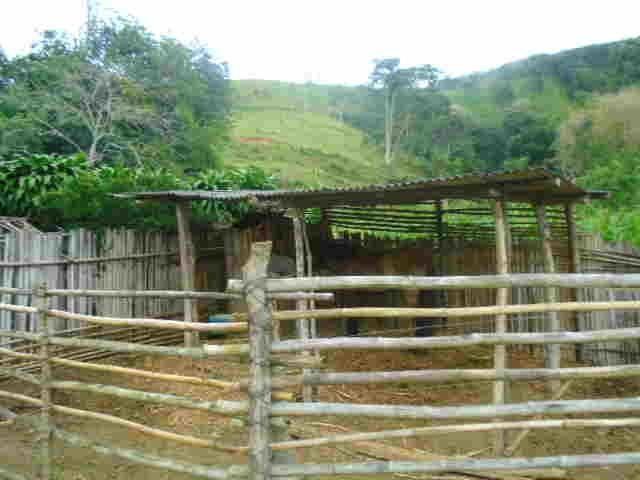 Código 8 - Sítio no bairro do Caju - Maricá com 9800m2 - Foto 3
