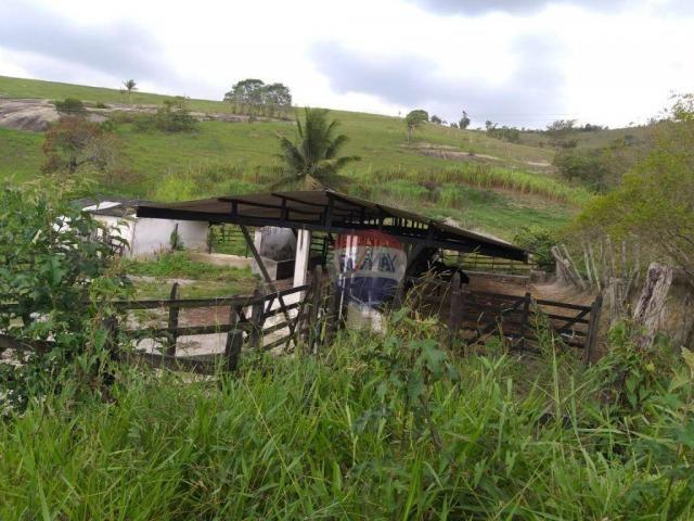 Fazenda com 4 dormitórios à venda, 800000 m² - zona rural - gravatá/pe - Foto 12