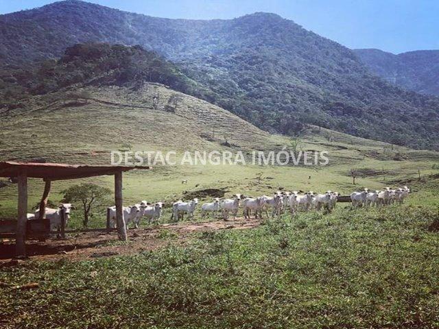 Fazenda na Serra D?água em Angra- 65 Alqueires - Foto 11