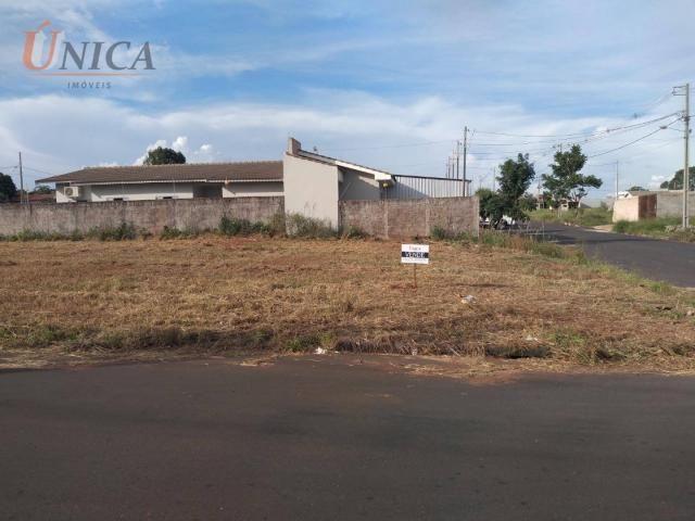 Terreno à venda, 200 m² por R$ 60.000 - Jardim Santos Dumont - Paranavaí/Paraná - Foto 4