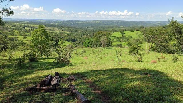 Chácara 2 Alqueires Formada 9 Km Asfalto Corumbá Goiás - Foto 11