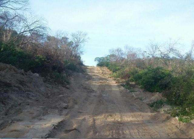 Fazenda à venda, * m² por R$ 12.500.000,00 - Zona Rural - Pilão Arcado/BA - Foto 6