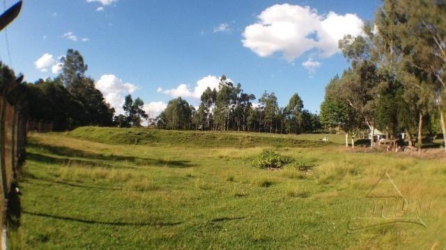 Chácara à venda em Sitio nono zonta, Passo fundo cod:8465 - Foto 19