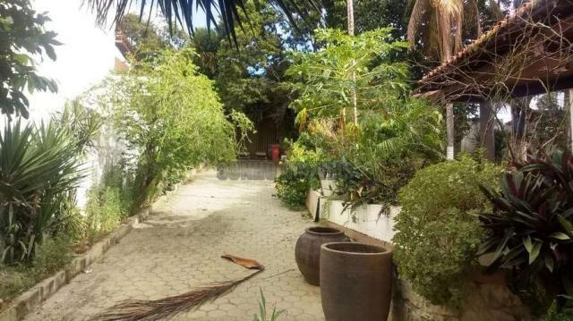 Sítio com 1.600 m2 total com árvores frutíferas - Foto 2