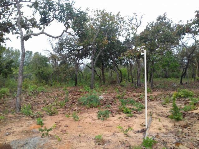 Fazenda na Estrada do Manso 45 Km, de Cuiabá - Foto 16