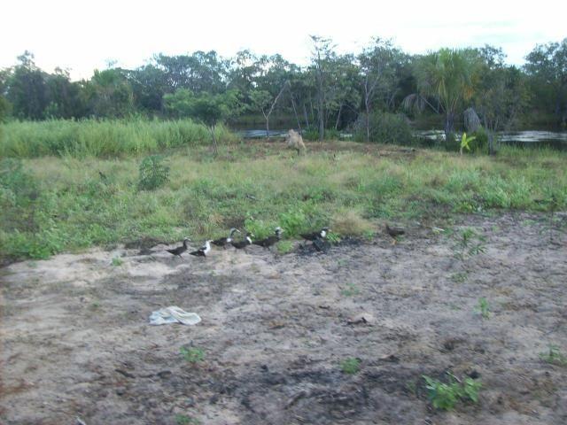 Fazenda com 6.000Ha à margem do Rio Preto! Em Mansidão BA. A 60km de Santa R. de Cassia - Foto 3