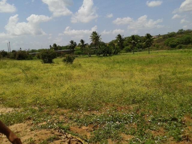 Fazenda com 62 há na br 304, com rio potengi, casa, deposito - Foto 4