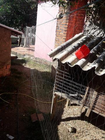 Redes de pescaria - Foto 2
