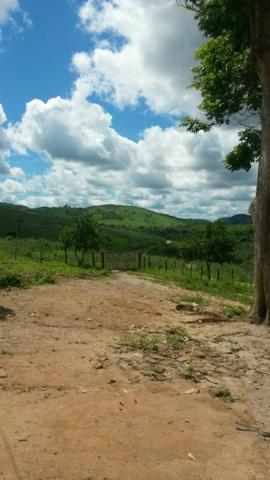Fazenda Ipiaú vale do Gongoji de 1.150ha com estrutura e sede. Oportunidade - Foto 2