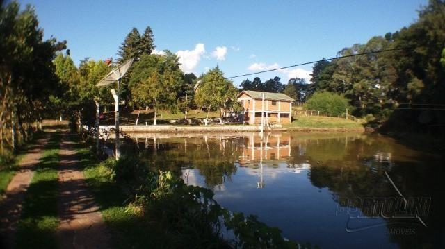 Chácara à venda em Sitio nono zonta, Passo fundo cod:8465 - Foto 10