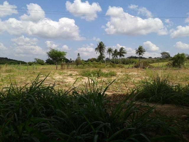 Fazenda com 62 há na br 304, com rio potengi, casa, deposito - Foto 5