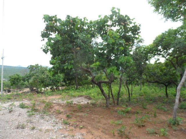 Fazenda na Estrada do Manso 45 Km, de Cuiabá - Foto 3