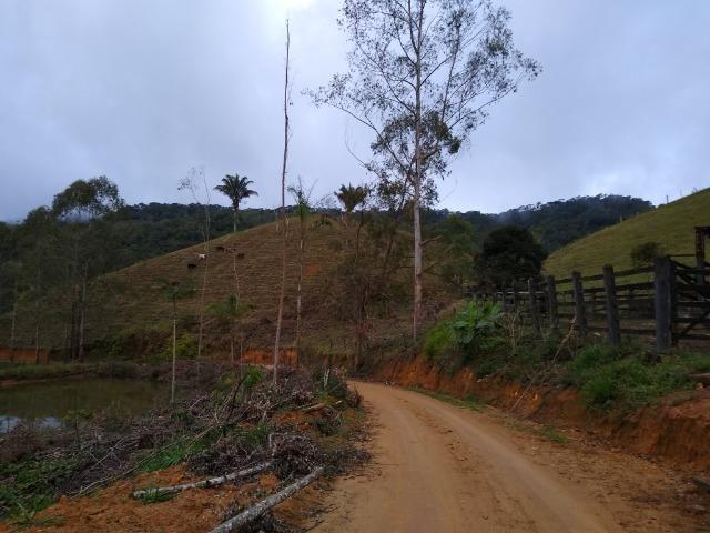 Fazenda Viana 20 alqueires - Foto 9