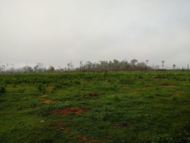 Vendo Fazenda em Novo Prigresso/PA - Foto 20