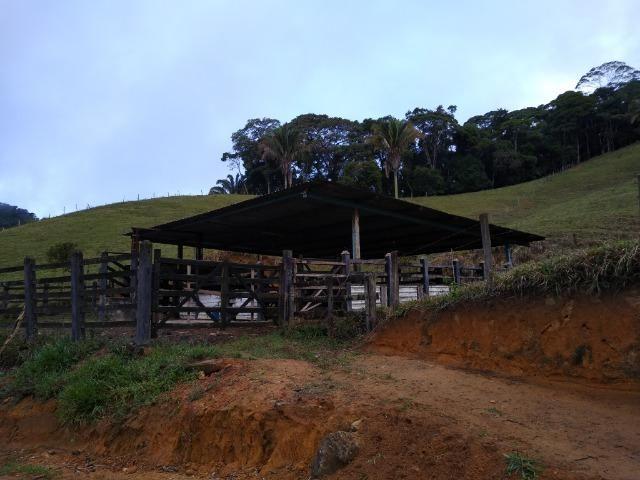 Fazenda Viana 20 alqueires - Foto 8