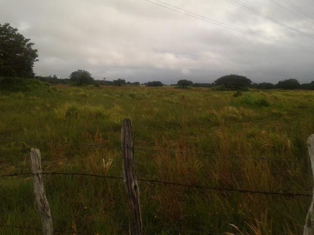 Fazenda com 110 há a 20 km de macaíba, 4 casas, 3 poços, riacho, barreiro - Foto 20