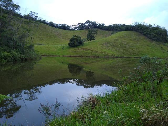 Fazenda Viana 20 alqueires - Foto 14