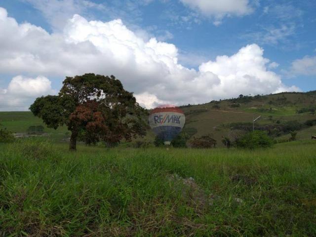 Fazenda com 4 dormitórios à venda, 800000 m² - zona rural - gravatá/pe - Foto 10