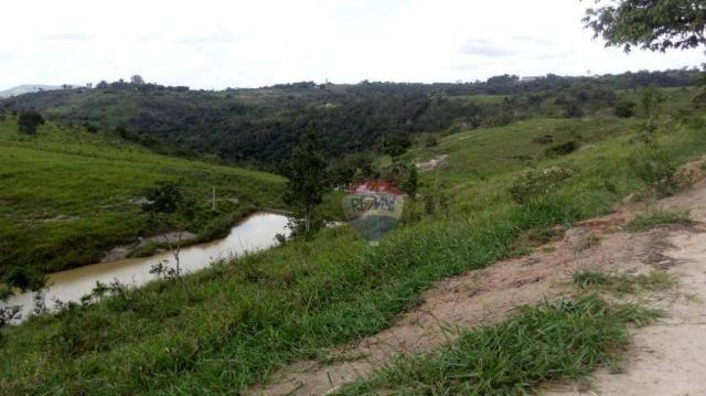 Fazenda com 4 dormitórios à venda, 800000 m² - zona rural - gravatá/pe - Foto 44