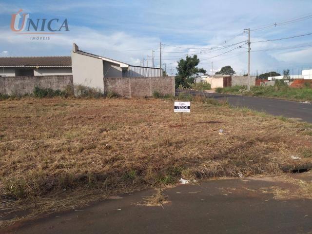 Terreno à venda, 200 m² por R$ 60.000 - Jardim Santos Dumont - Paranavaí/Paraná - Foto 2