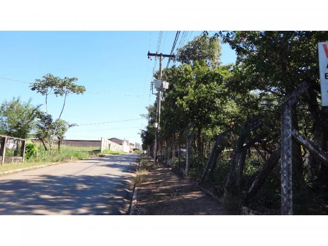 Chácara à venda com 3 dormitórios em Jardim potiguar, Varzea grande cod:15475 - Foto 3