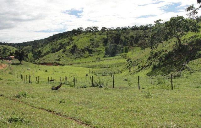 Vendo sítios e fazendas com ótimos preços - Foto 9
