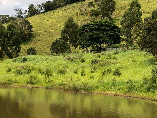 Vendo sítios e fazendas com ótimos preços - Foto 7