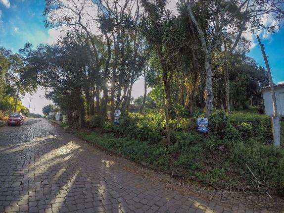Terreno à venda em Vila luiza, Passo fundo cod:7926 - Foto 3