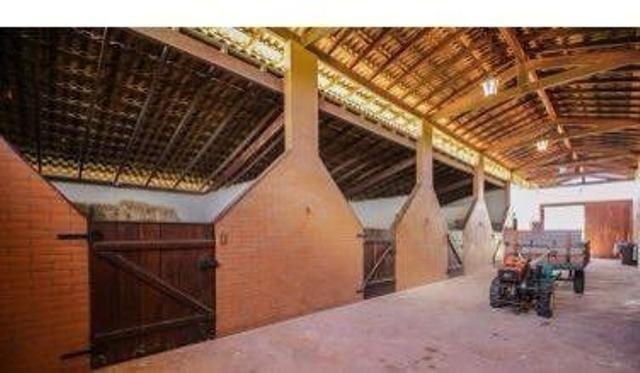 Samuel Pereira oferece: Haras com estrutura pronta, para criadores de bom gosto! - Foto 19