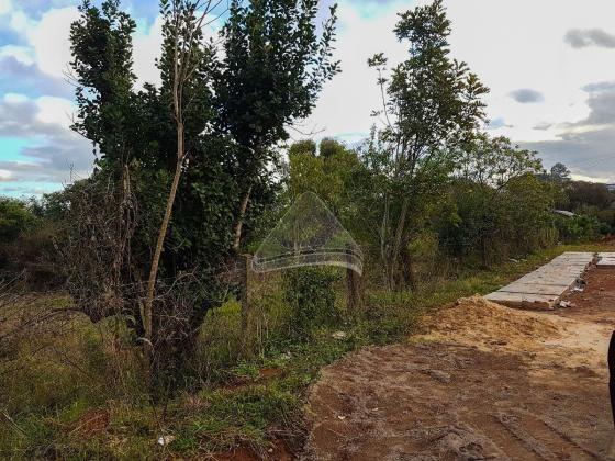 Terreno à venda em Santa marta, Passo fundo cod:10583 - Foto 2