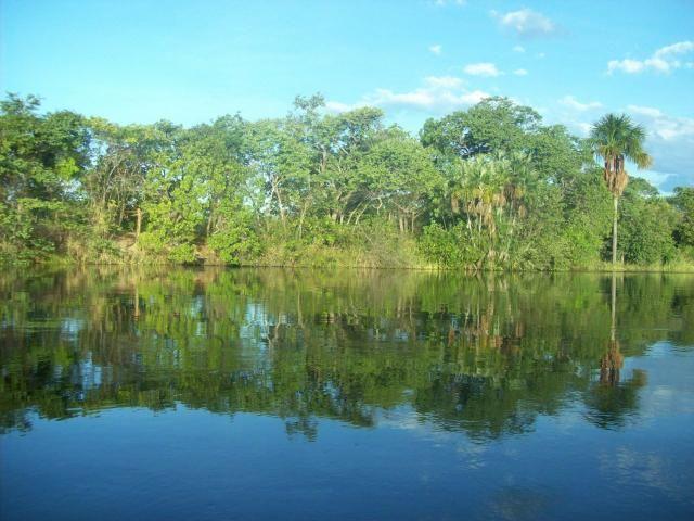 Fazenda com 6.000Ha à margem do Rio Preto! Em Mansidão BA. A 60km de Santa R. de Cassia - Foto 5