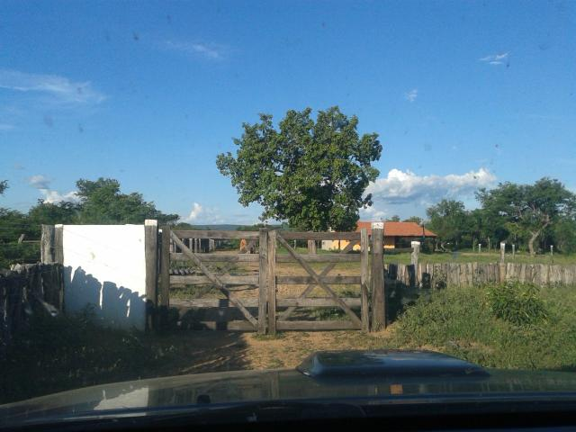 Fazenda com 6.000Ha à margem do Rio Preto! Em Mansidão BA. A 60km de Santa R. de Cassia - Foto 20