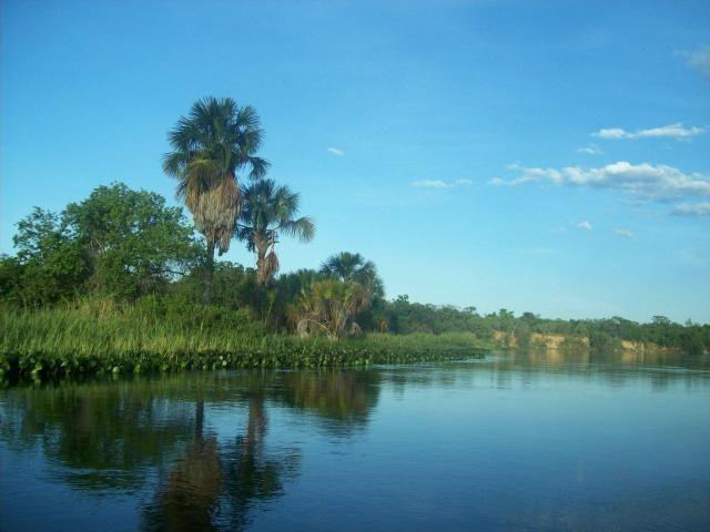 Fazenda com 6.000Ha à margem do Rio Preto! Em Mansidão BA. A 60km de Santa R. de Cassia - Foto 11