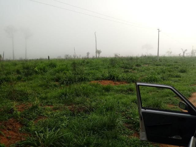 Vendo Fazenda em Novo Prigresso/PA - Foto 16