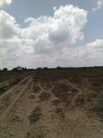 Terra no Sítio Lagoa Redonda Zona Rural de São Pedro RN What * - Foto 4