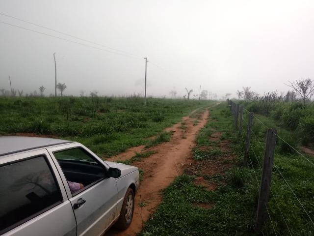 Vendo Fazenda em Novo Prigresso/PA - Foto 10