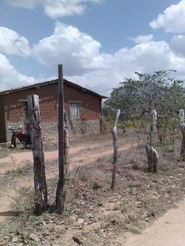 Terra no Sítio Lagoa Redonda Zona Rural de São Pedro RN What * - Foto 9