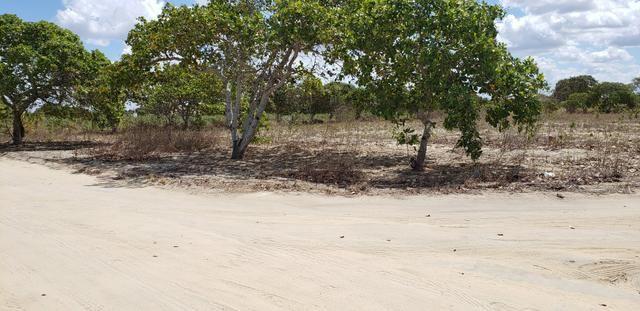 Terrenos na Serra de Santana! Próximo a Lagoa Nova RN - Foto 2