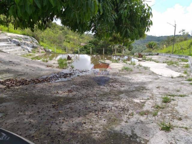 Fazenda com 4 dormitórios à venda, 800000 m² - zona rural - gravatá/pe - Foto 18