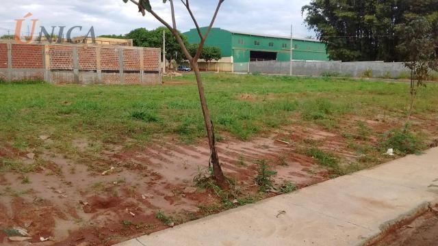 Terreno à venda, 250 m² por R$ 80.000 - Jardim Novo Ouro Branco - Foto 3