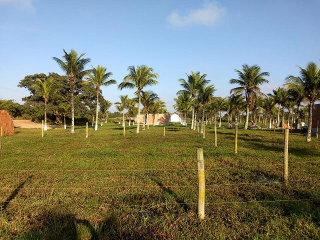 MhCód: 144 Terrenos Próximo ao Trevo de Búzios - Foto 3