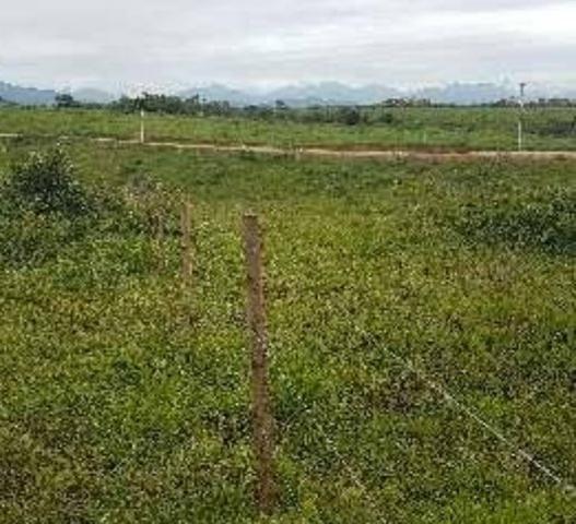 Terreno de 360m2 por R$90mil direto com o proprietário *15 - Foto 6